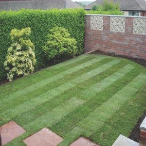 Landscaping company Shrewsbury